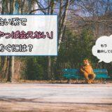 ベンチに座るクマ