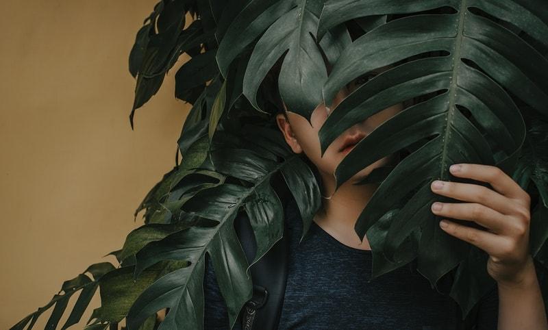 葉っぱと男性
